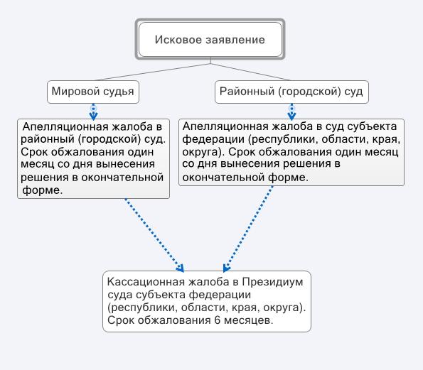 Схема подачи апелляционной